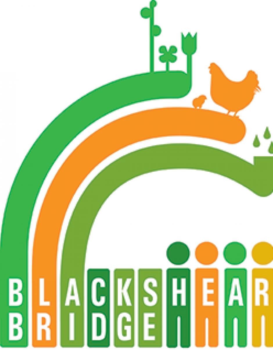 Blackshear Bridge Logo