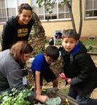 Soil Testing with Huston-Tillotson's Dirt Y Profesor